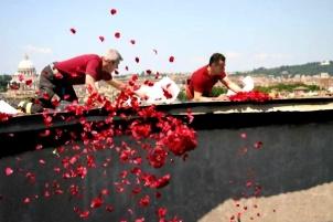 rose-petals-throwing-through-the-oculus-pantheon